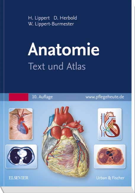 Anatomie - 9783437261831 | Elsevier GmbH
