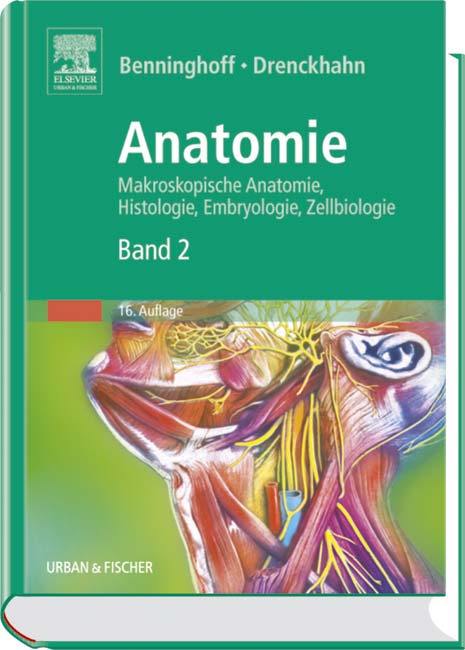 Anatomie, Makroskopische Anatomie, Embryologie und Histologie des ...