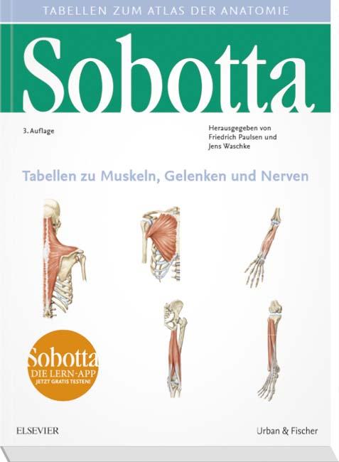 Sobotta Tabellen zu Muskeln, Gelenken und Nerven - 9783437440144 ...