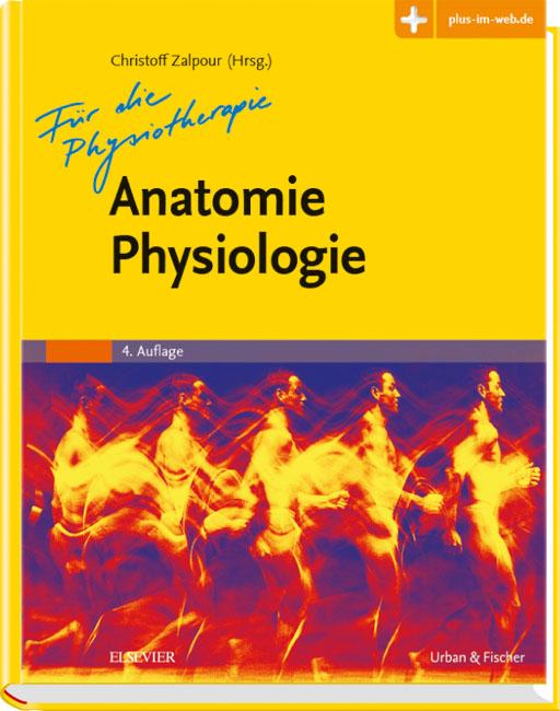 Anatomie Physiologie für die Physiotherapie - 9783437453045 ...